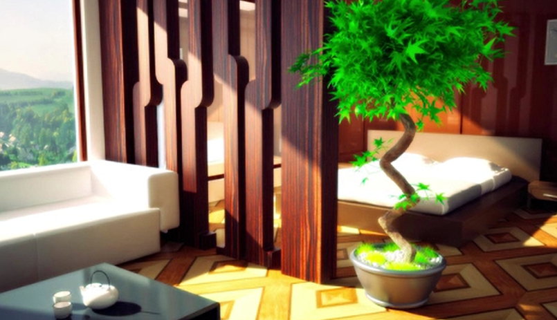 Zen Your Zone with Feng Shui