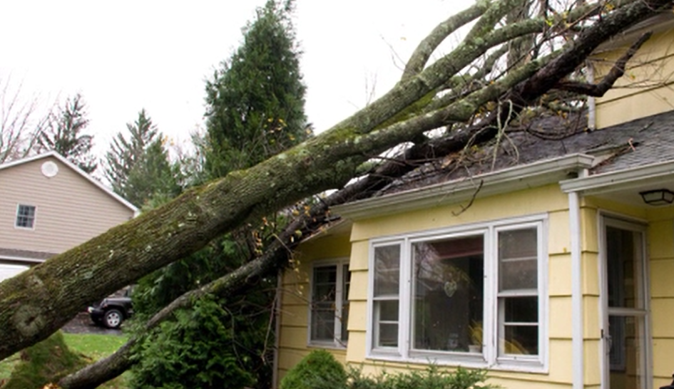 Suffering From Storm Damage Get Your Claim Filed Faster
