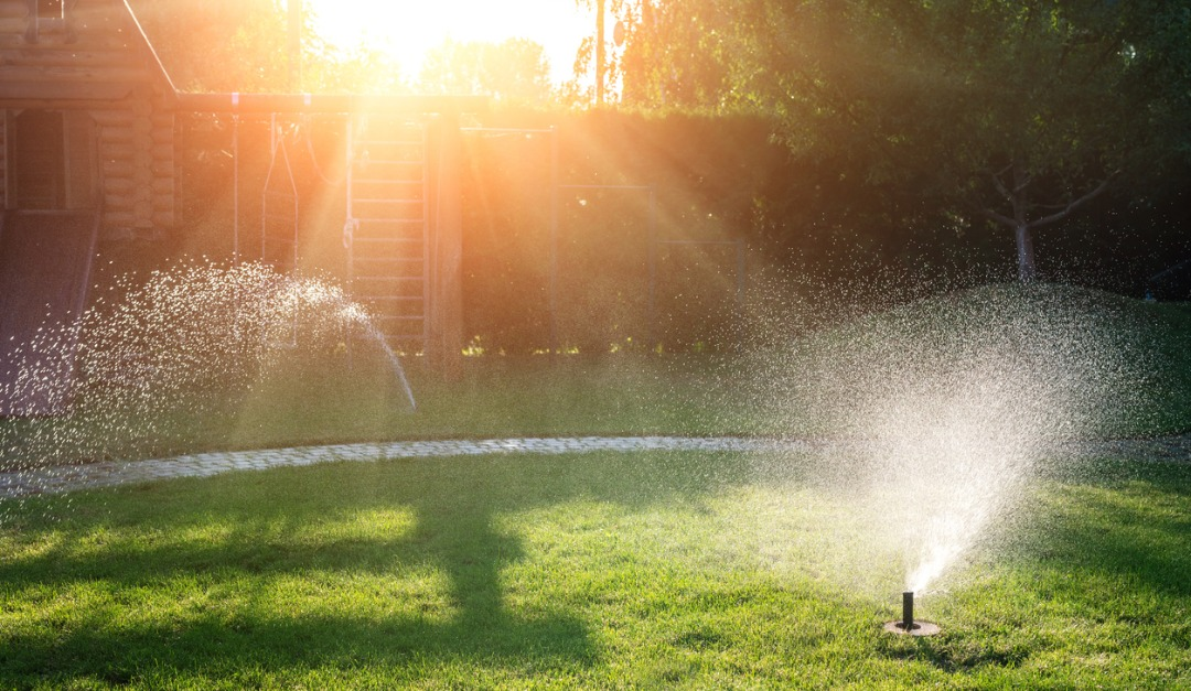 Why You Should Install a Smart Irrigation System